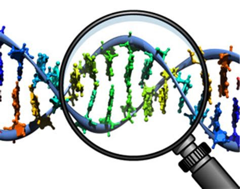 Research paper on molecular genetics science
